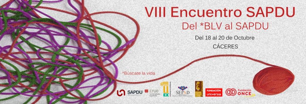 Banner del VIII Encuentro de la Red de Servicios de Atención a Personas con Discapacidad en la  Universidad