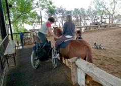 Foto de actividad de rehabilitación asistida por caballos